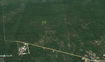 Foto de terreno habitacional en venta en sierra papacal , sierra papacal, mérida, yucatán, 14105889 No. 01