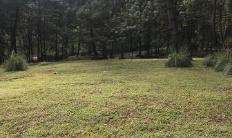 Foto de terreno habitacional en venta en sin nombre, los alamos , valle de bravo, valle de bravo, méxico, 6172938 No. 05