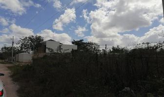 Foto de terreno habitacional en venta en sin número sin número, temozon norte, mérida, yucatán, 0 No. 01