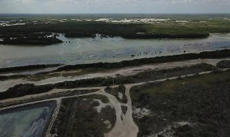 Foto de terreno habitacional en venta en  , sisal, hunucmá, yucatán, 13851197 No. 01