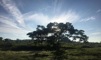Foto de terreno habitacional en venta en  , sitpach, mérida, yucatán, 16683275 No. 01