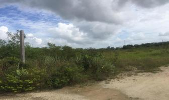 Foto de terreno habitacional en venta en sm , cholul, mérida, yucatán, 0 No. 01