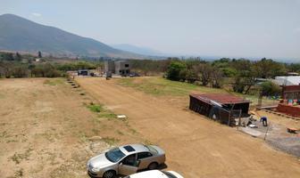 Foto de terreno habitacional en venta en sn 1, san andres huayapam, san andrés huayápam, oaxaca, 14991238 No. 01