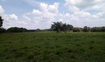 Foto de terreno comercial en venta en s/n , huimanguillo, huimanguillo, tabasco, 5777643 No. 01
