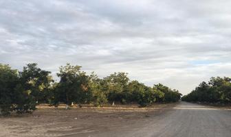 Foto de terreno habitacional en venta en s/n , la barranca, torreón, coahuila de zaragoza, 12160381 No. 05