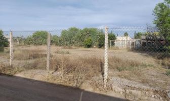 Foto de terreno habitacional en venta en s/n , la concha, torreón, coahuila de zaragoza, 10106896 No. 09