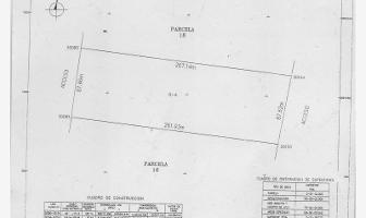 Foto de terreno habitacional en venta en s/n , matamoros, matamoros, coahuila de zaragoza, 12159233 No. 01