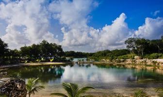 Foto de terreno habitacional en venta en s/n , puerto aventuras, solidaridad, quintana roo, 12162102 No. 01