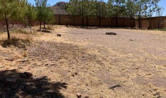 Foto de rancho en venta en s/n , residencial casa blanca, durango, durango, 12602473 No. 02
