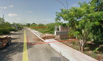 Foto de terreno habitacional en venta en  , santa gertrudis copo, mérida, yucatán, 9909278 No. 01