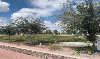 Foto de terreno habitacional en venta en s/n , sierra papacal, mérida, yucatán, 13112048 No. 01