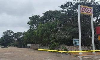 Foto de terreno habitacional en renta en  , sucila, sucilá, yucatán, 11178158 No. 01