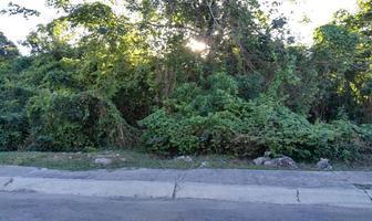 Foto de terreno habitacional en venta en supermanzana 309 calle paseo del mar , campestre, benito juárez, quintana roo, 6214906 No. 01