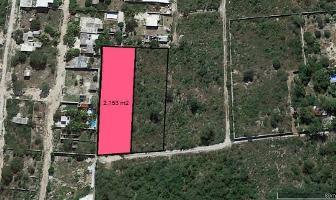 Foto de terreno habitacional en venta en tablaje 30254 , dzitya, mérida, yucatán, 0 No. 01