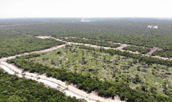 Foto de terreno habitacional en venta en  , tamanché, mérida, yucatán, 13810795 No. 01