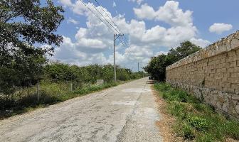 Foto de terreno habitacional en venta en  , tamanché, mérida, yucatán, 15774946 No. 01