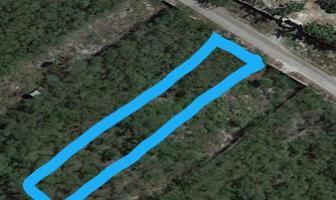 Foto de terreno habitacional en venta en  , tamanché, mérida, yucatán, 5934961 No. 01
