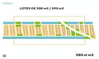 Foto de terreno habitacional en venta en  , telchac puerto, telchac puerto, yucatán, 18449629 No. 01