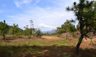 Foto de terreno habitacional en venta en temascaltepec s/n , valle de bravo, valle de bravo, méxico, 14868906 No. 01