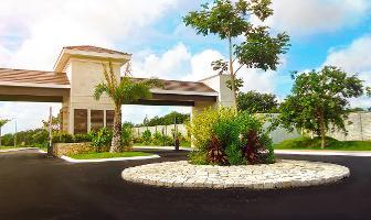 Foto de terreno habitacional en venta en  , temozon norte, mérida, yucatán, 0 No. 01