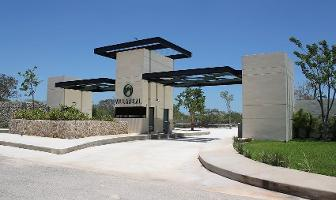 Foto de terreno habitacional en venta en temozón norte , temozon norte, mérida, yucatán, 0 No. 01