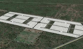 Foto de terreno habitacional en venta en  , tixpehual, tixpéhual, yucatán, 10795666 No. 01