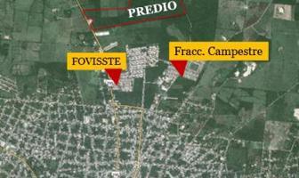 Foto de terreno habitacional en venta en  , tizimin centro, tizimín, yucatán, 11170738 No. 01