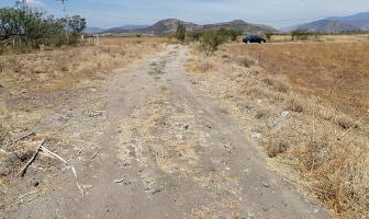 Foto de terreno habitacional en venta en  , tlacolula de matamoros centro, tlacolula de matamoros, oaxaca, 14264694 No. 01