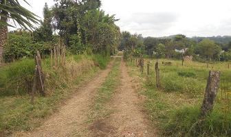 Foto de terreno habitacional en venta en  , tlalnelhuayocan, tlalnelhuayocan, veracruz de ignacio de la llave, 2631392 No. 02