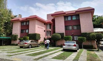 Foto de departamento en renta en  , tlaltenango, cuernavaca, morelos, 11528160 No. 01