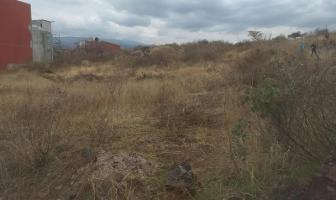 Foto de terreno habitacional en venta en  , tlayacapan, tlayacapan, morelos, 7700853 No. 01