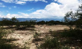 Foto de terreno habitacional en venta en torrecillas y ramones , torrecillas y ramones, saltillo, coahuila de zaragoza, 8323315 No. 01