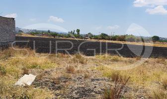 Foto de terreno habitacional en venta en  , torreón nuevo, morelia, michoacán de ocampo, 0 No. 01