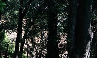 Foto de departamento en venta en  , torres de potrero, álvaro obregón, distrito federal, 6154503 No. 01