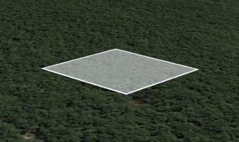 Foto de terreno habitacional en venta en  , tulum centro, tulum, quintana roo, 11781837 No. 01