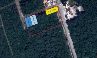 Foto de terreno habitacional en venta en  , tulum centro, tulum, quintana roo, 14199095 No. 01