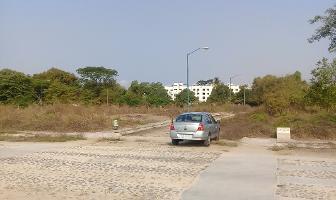Foto de terreno habitacional en venta en turquesa , salahua, manzanillo, colima, 7201890 No. 04
