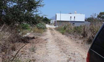 Foto de terreno habitacional en venta en turquesa s/n , salahua, manzanillo, colima, 5289843 No. 03