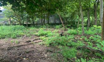 Foto de terreno habitacional en venta en  , tzimol, tzimol, chiapas, 17958213 No. 01