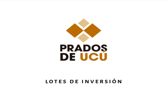 Foto de terreno habitacional en venta en  , ucu, ucú, yucatán, 14112373 No. 01
