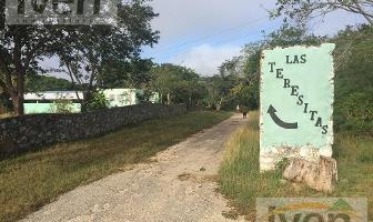 Foto de terreno habitacional en venta en  , uman, umán, yucatán, 17196955 No. 01