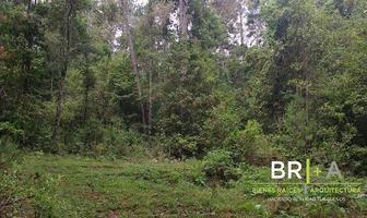 Foto de terreno habitacional en venta en  , valle de bravo, valle de bravo, méxico, 13905899 No. 01