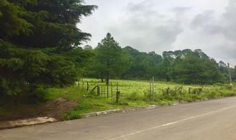 Foto de terreno habitacional en venta en  , valle de bravo, valle de bravo, méxico, 13910233 No. 01