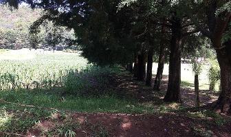 Foto de terreno habitacional en venta en  , valle de bravo, valle de bravo, méxico, 13910313 No. 01