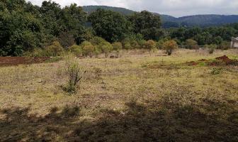 Foto de terreno habitacional en venta en  , valle de bravo, valle de bravo, méxico, 14469475 No. 01