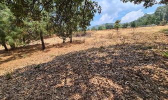 Foto de terreno habitacional en venta en  , valle de bravo, valle de bravo, méxico, 14855308 No. 01
