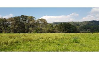 Foto de terreno habitacional en venta en  , valle de bravo, valle de bravo, méxico, 18541632 No. 01