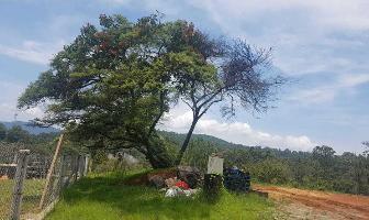 Foto de terreno habitacional en venta en  , rincón de estradas, valle de bravo, méxico, 5530801 No. 01