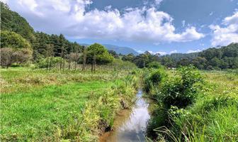 Foto de terreno habitacional en venta en  , valle de bravo, valle de bravo, méxico, 9305200 No. 01