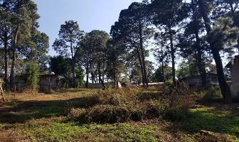 Foto de terreno habitacional en venta en vega del alamo , av?ndaro, valle de bravo, m?xico, 6644249 No. 01